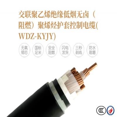 交联聚乙烯绝缘低烟无卤(阻燃)聚烯烃护套控制电缆(WDZ-KYJY)